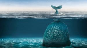 plastico y ballenas