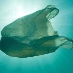 plastico del mar