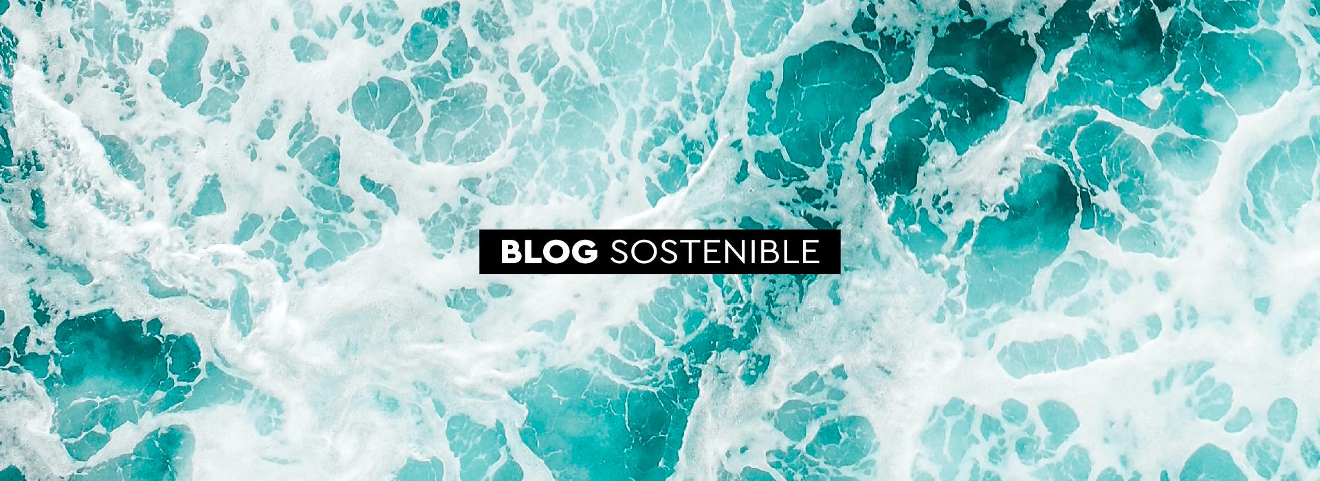 blog sostenible